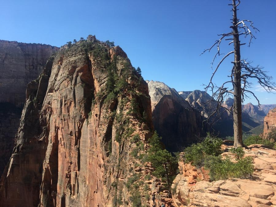 Angel's Landing Trail - Zion - Utah